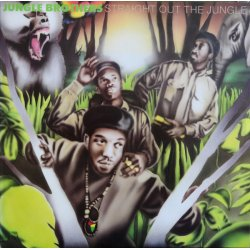 Jungle Brothers - Straight Out The Jungle, LP
