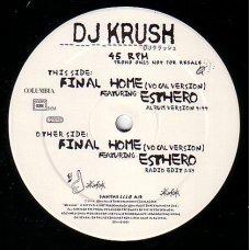 "DJ Krush = DJ クラッシュ Featuring Esthero - Final Home (Vocal Version), 12"", Promo"